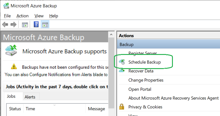 configure agent backup settings